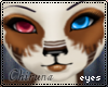 [Chi]Kammy two tone eyes