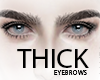 THICK Eyebrows .02