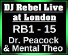 DJ Rebel Live at London