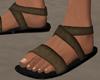 Sport Sandals Brown