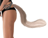 cat's tail blond