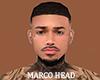 Marco Head