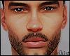 Asteri brows&beard