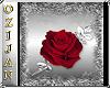 ozijan Room banner rose
