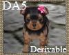 (A) Terrier Puppy
