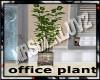 MATERNITY: office plant1