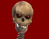 Determinator skeleton