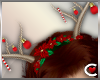 *SC-Reindeer Antlers