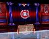 Hockey Goalie Net