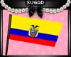 Ecuador Flag (M&F)