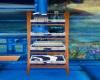 Blue Ladder Shelf
