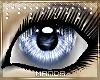 .M. CinnaBun Eyes Blue