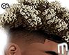 F Boy Curls - Ombre