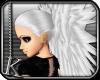 [K] Frost Angel Dream