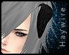 :Black Schnauzer ears