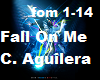 Fall On Me C. Aguilera
