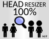 head resizer 100 %