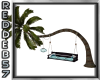 Soft Teal Tree & Lounge