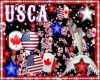 USA&CANADA PARTICLES