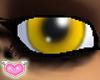 [FC Model Eyes-cat