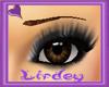 (LIR) Brown Eyebrows