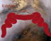* E * red fur
