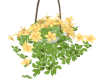 Hanging Flowers Yellow