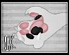 CK-Jaya-Paws F\A