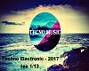 Techno Electronic 2017