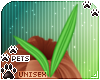 [Pets] Quin | head leaf