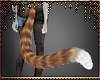 [Ry] Ginger tail