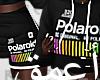 Polaroid l