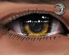 Honey King Eyes