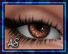AS|Gems|Brown