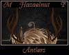 Hazaelnut Antlers