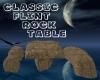 C Flint Rock Table
