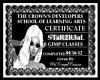 STAR  GIMP CERTIFICATE