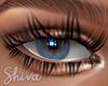 $ Shiva EL Dollie