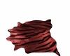 Red Tiger Rug