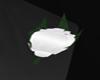 (TRL) Classic Lapel Rose