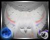 Aurora Fox Ears