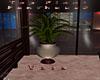 Penthouse Vase