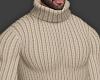 👕 Beige Sweater