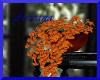 Trumpet vine plant