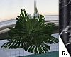 e Plant 1