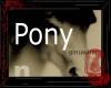 DJ/ Ginuwine Pony