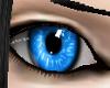 Volfen Blue Female
