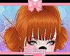 🎀Kishi Fox