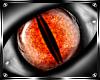 * Dwelle Eyes M *