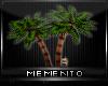 ~M~Primitive Fan Trees